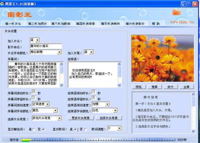 图影王 Tyscw 8.2 高级版